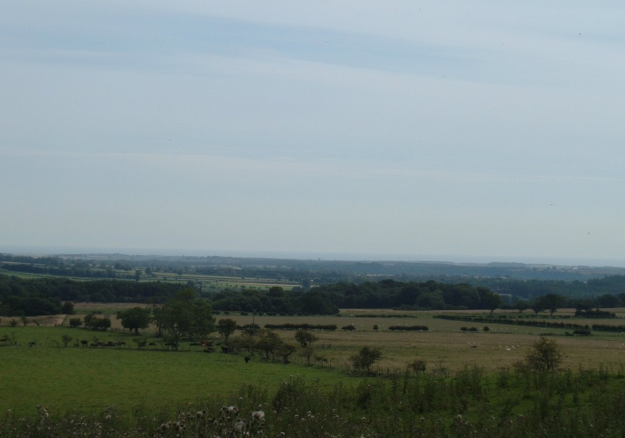 The view to the East from the main road over the fields